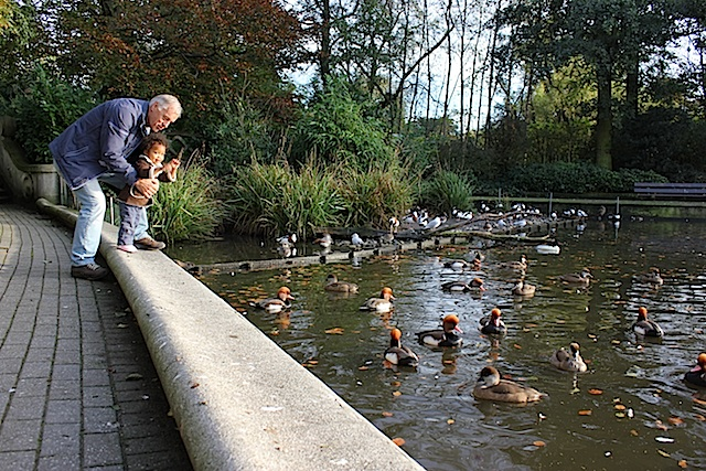 Many strange ducks in this pond, including Opa.